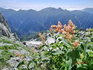 立山から見る黒部ダム周辺風景
